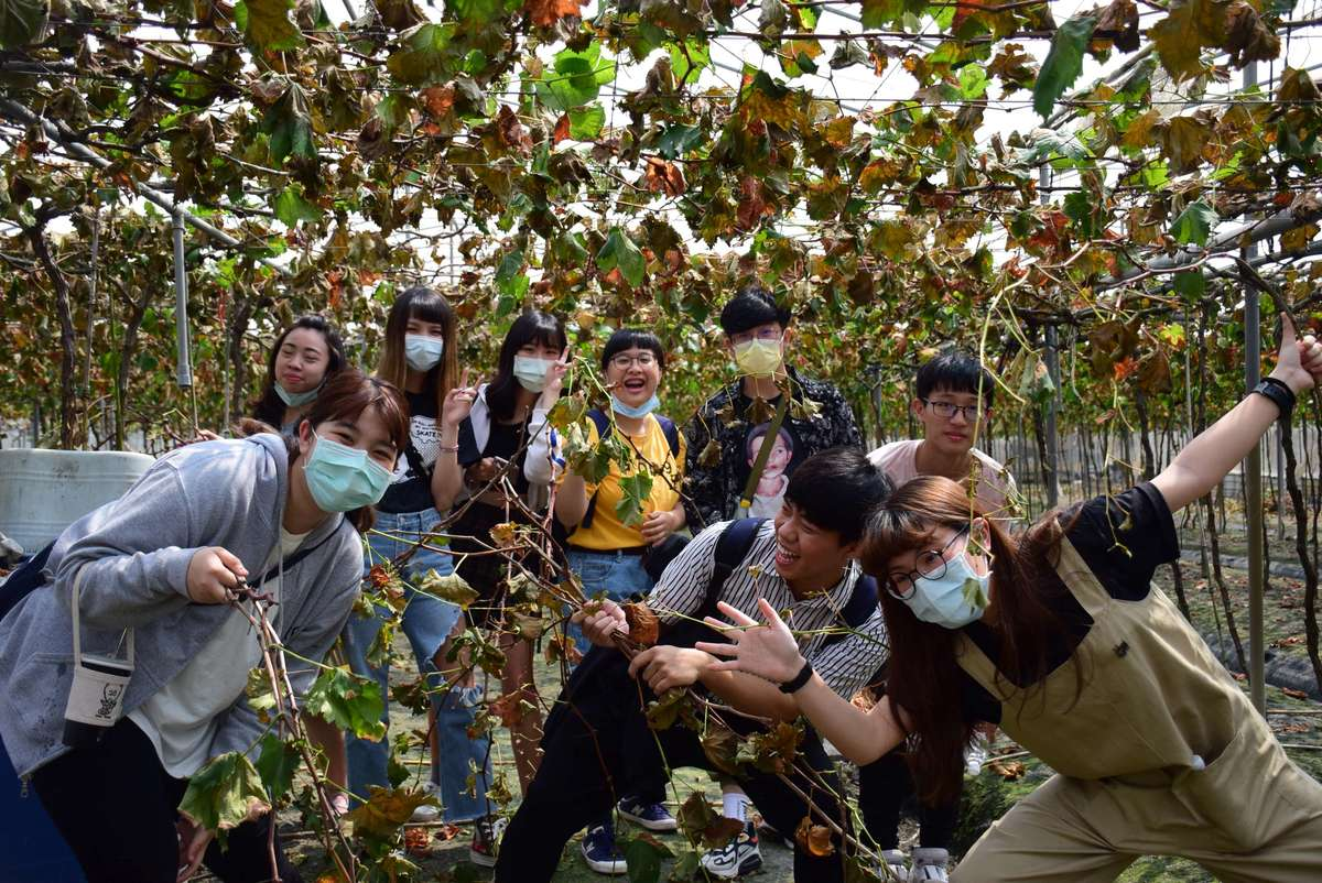 Students of Department of Industrial Design helped farmers in the village of Da-Chuen, Changhua County,   build their own furniture brands by taking advantage of abandoned vines and developed innovative and eco-friendly vine-antiseptic technology to promote a green circular economy.